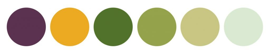 Kleurenpalet voor masseur Anneke Wolters